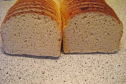 Goldener Toast 133