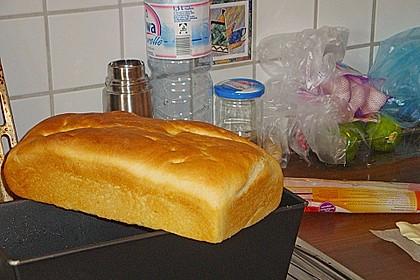 Goldener Toast 199