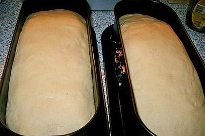 Goldener Toast 221