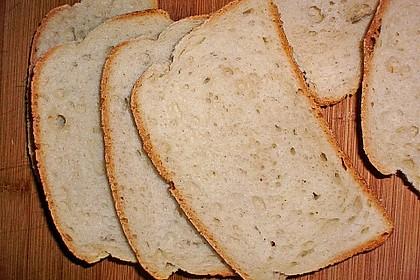 Goldener Toast 183