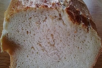 Goldener Toast 124