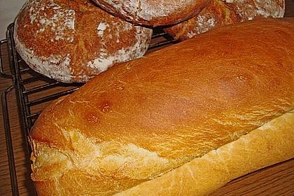 Goldener Toast 168