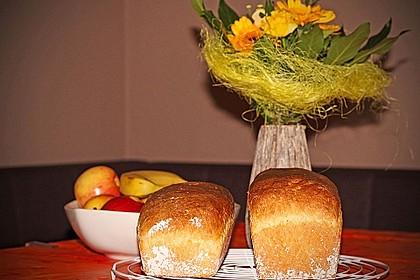 Goldener Toast 67