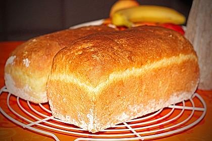 Goldener Toast 15