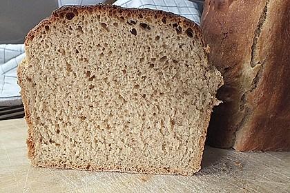 Goldener Toast 19