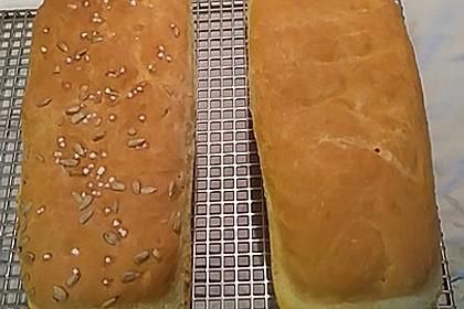 Goldener Toast 63