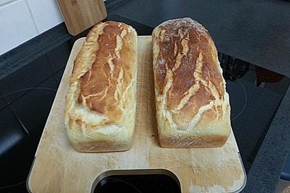 Goldener Toast 62