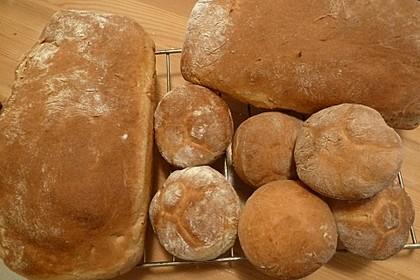 Goldener Toast 113