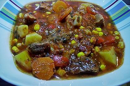 Bunter Fleisch-Kartoffel Topf - Bauerneintopf 13