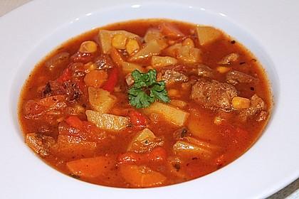 Bunter Fleisch-Kartoffel Topf - Bauerneintopf 2