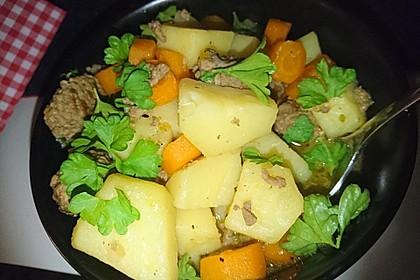 Hackfleisch - Kartoffel - Möhren - Eintopf 12