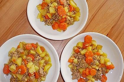 Hackfleisch - Kartoffel - Möhren - Eintopf 8