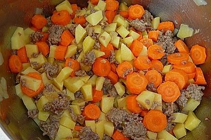 Hackfleisch - Kartoffel - Möhren - Eintopf 58