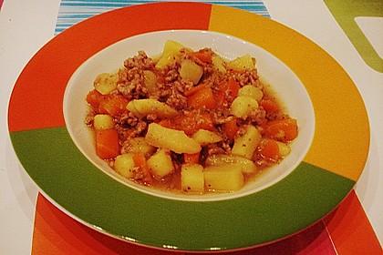 Hackfleisch - Kartoffel - Möhren - Eintopf 52