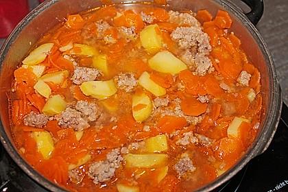 Hackfleisch - Kartoffel - Möhren - Eintopf 50
