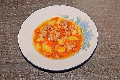 Hackfleisch - Kartoffel - Möhren - Eintopf 49