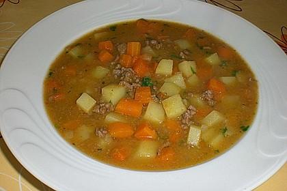Hackfleisch - Kartoffel - Möhren - Eintopf 9