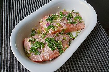 Marinierter Lachs, überbacken mit Tomaten und Mozzarella 10