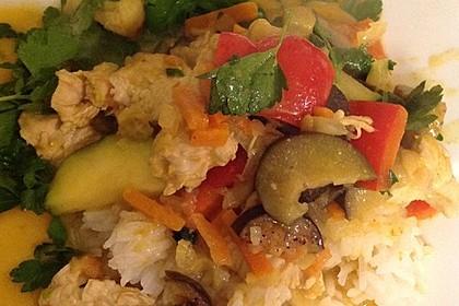 Thai-Red-Curry für mehrere Variationen 55