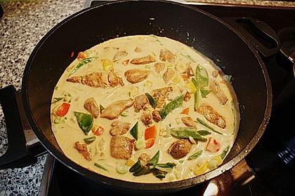 Thai-Red-Curry für mehrere Variationen 67