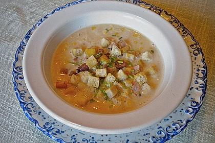 Maisfeld - Suppe 5