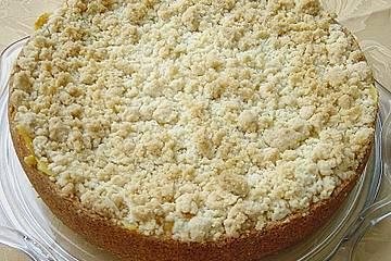 Leichter Apfelkuchen mit Vanillepudding und Streuseln