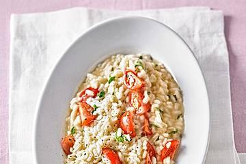 Tomaten - Mozzarella - Risotto