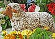 Osterlaemmchen-mit-Marzipan