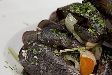Muscheln rheinische Art
