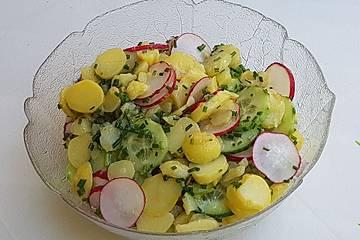 Kartoffelsalat mit Radieschen und Sprossen