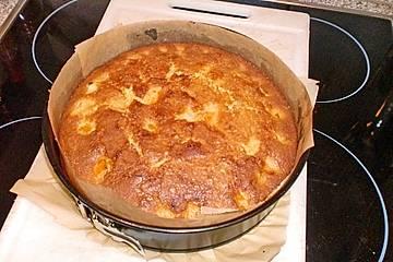 Aprikosenkuchen mit frischen Aprikosen und Fruchtspiegel