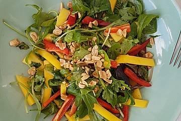 Exotischer Mango-Salat mit Paprika, Koriander und Erdnüssen