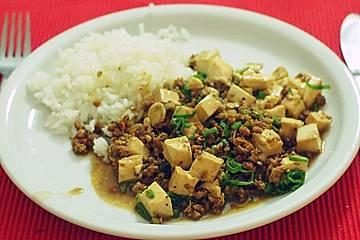 Mapo Doufu vegetarisch