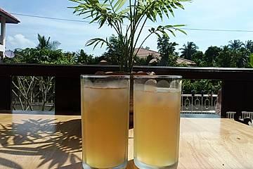 Ingwer -  Limonade