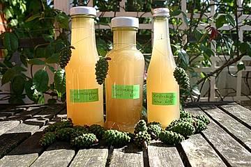 Grüne Kiefernzapfen-Sirup
