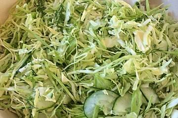 Krautsalat aus jungem Weißkohl mit Gurken und Dill