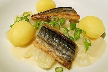 Gebratene Makrelenfilets, Rahmkohlrabi und Kartöffelchen