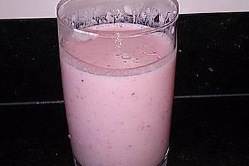 Probiotischer Erdbeerjoghurt für den Thermomix