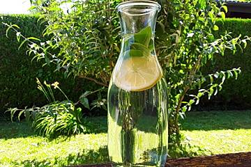 Zitronen-Basilikum-Wasser