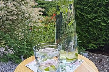 Limette-Zitronenmelisse-Wasser