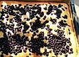 Heidelbeer-Blechkuchen