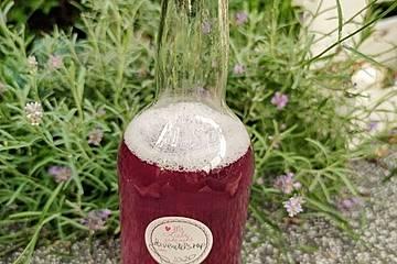 Lavendelblütensirup mit Birkenzucker