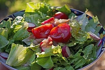 Senf - Salatsoße für alle grünen Salate