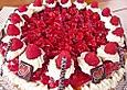 Schneller-Rote-Gruetze-Kuchen-mit-Schmand