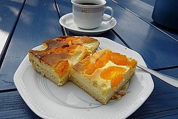 Quark - Mandarinen - Kuchen