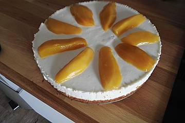 Panna - Cotta Torte mit Aprikosen