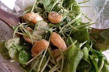 Postelein - Salat mit Ei und Mandarinen an einer leichten Joghurtsoße