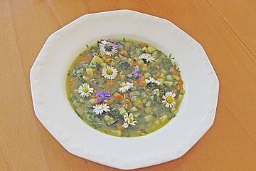 Brennnessel-Gänseblümchen-Suppe