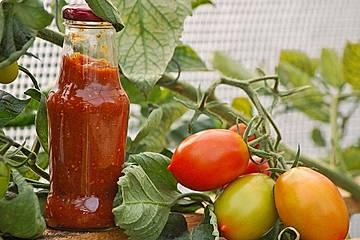 Hot Zucchini - Salsa