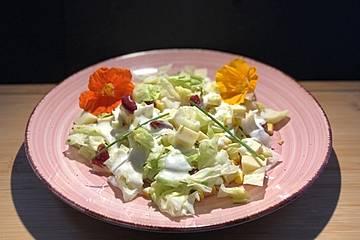 Bunter Eisbergsalat mit Käse